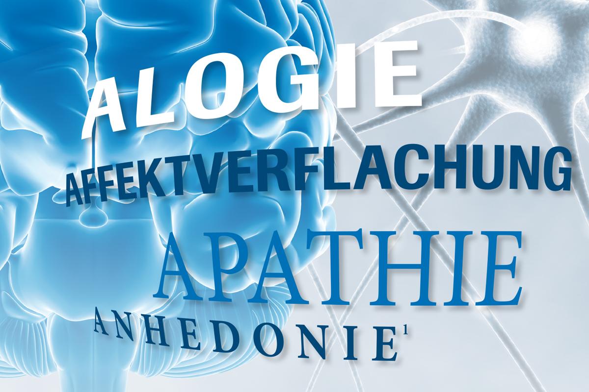 Roche – Broschüre Schizophrenie